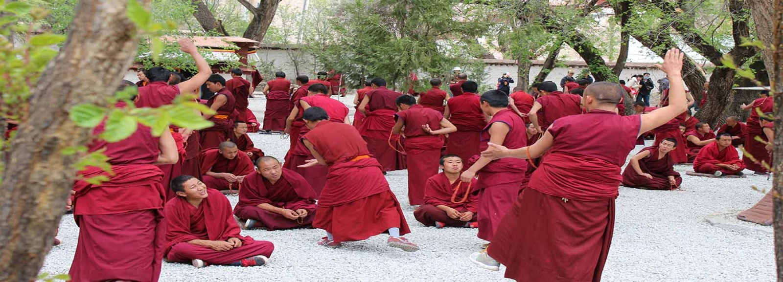 Visit the Sera Monastery and watch the famous Monks Debate
